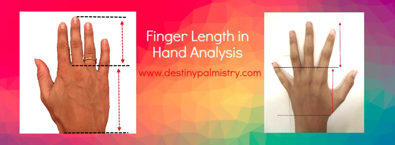 small finger, short finger meaning in palmistry