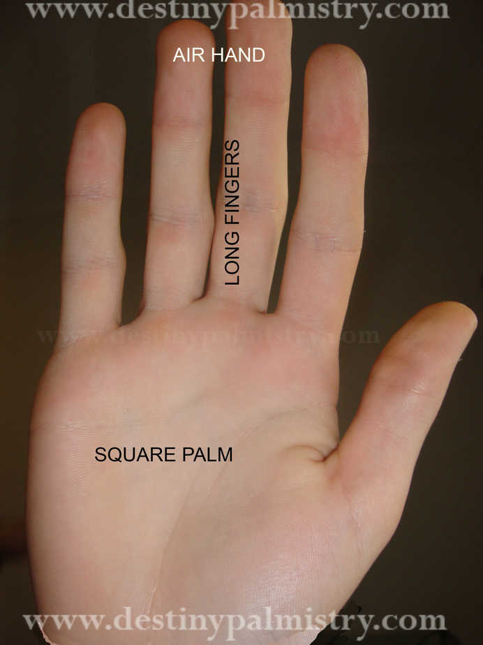 destiny palmistry, long fingers