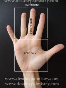 water hand shape, palmistry hand, sari puhakka