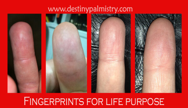 fingerprints for life purpose
