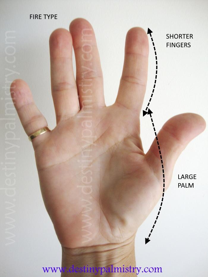 large palm, short fingers