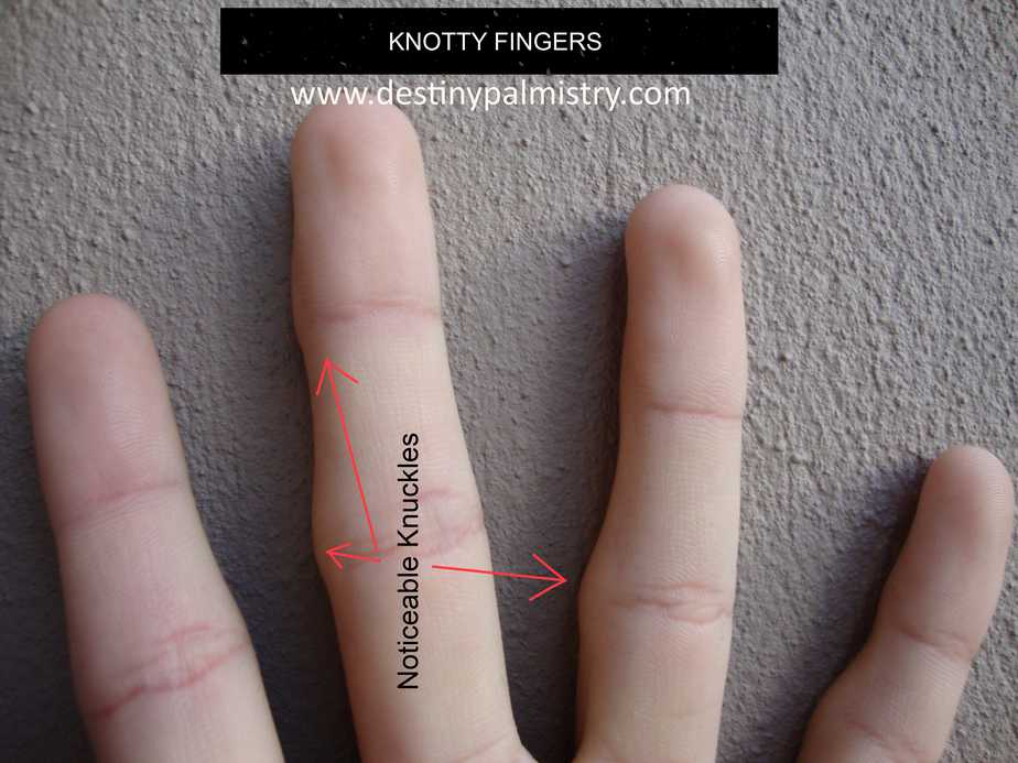 palmistry, hand reading, knotty fingers. knotted fingers. big knuckles. best palm reader. Australia's best palm reader. best palmistry website.