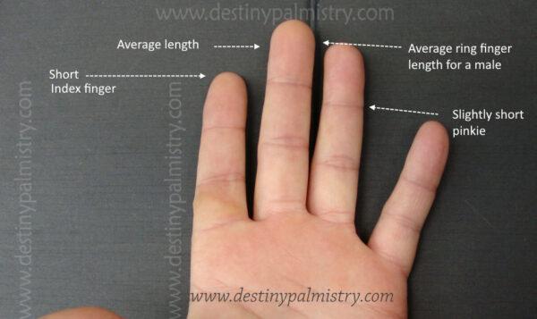 short finger meanings in palmistry