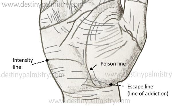 poison line, intensity line, addiction line, escape line