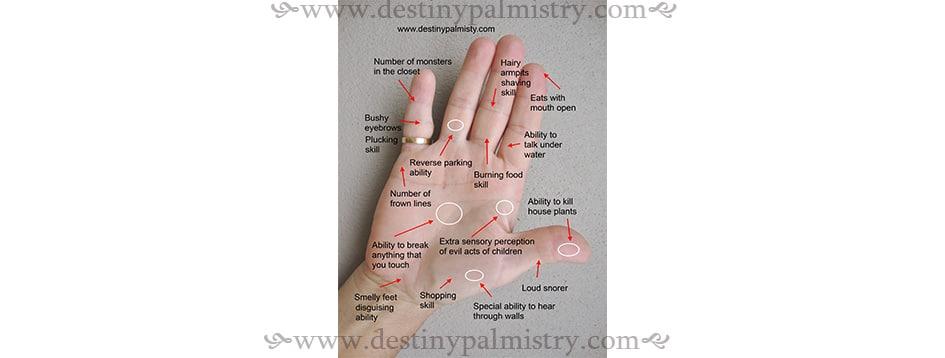 funny palmistry memes, palmistry jokes