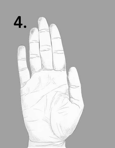 hand shape, narrow hand, water hand