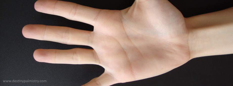 palmistry related sites, free palmistry, learn palm reaiding