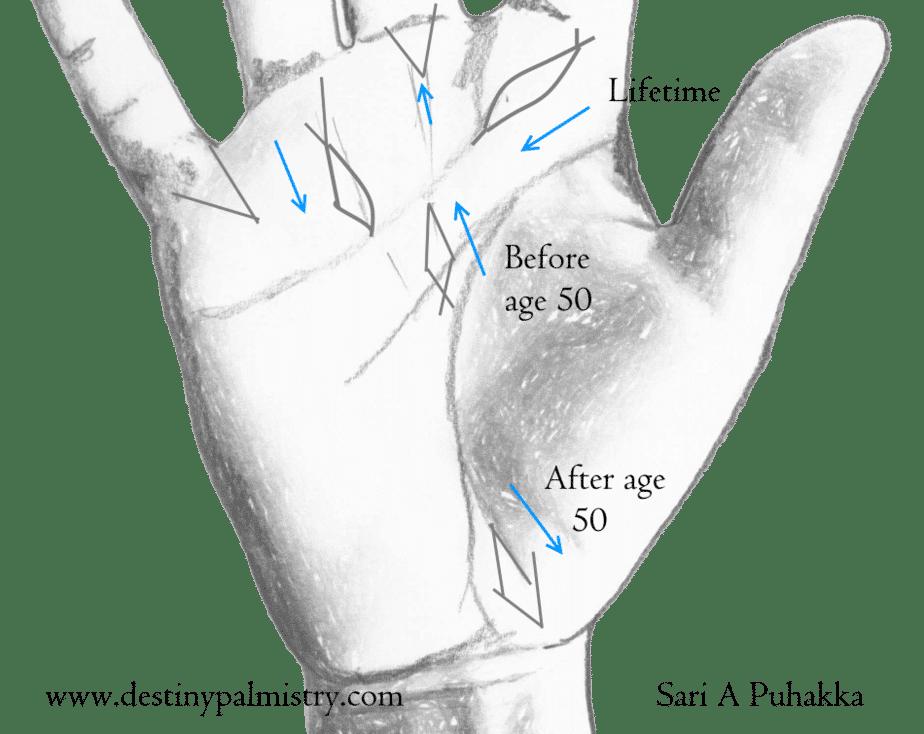 Fish Sign on the Palm Indian Palmistry - Destiny Palmistry