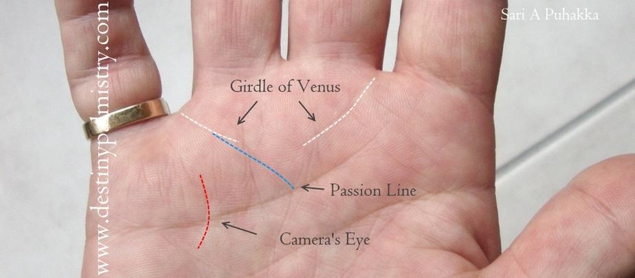 passion line, camera's eye, camera eye line, artist hand in palmistry
