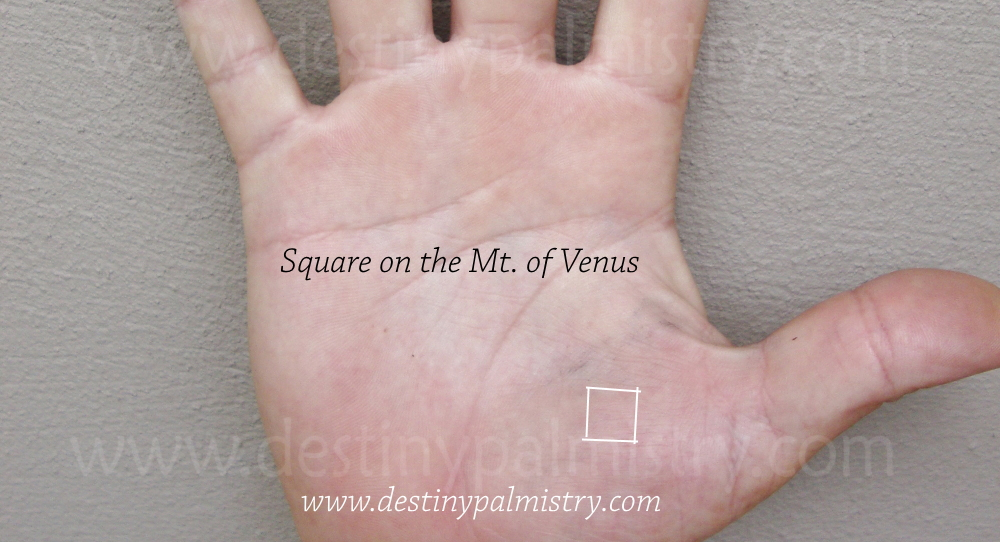 square on the Venus mount on palm