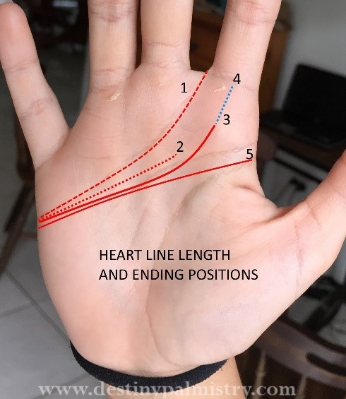 heart line types, love lines, emotional person mark palm, passionate line