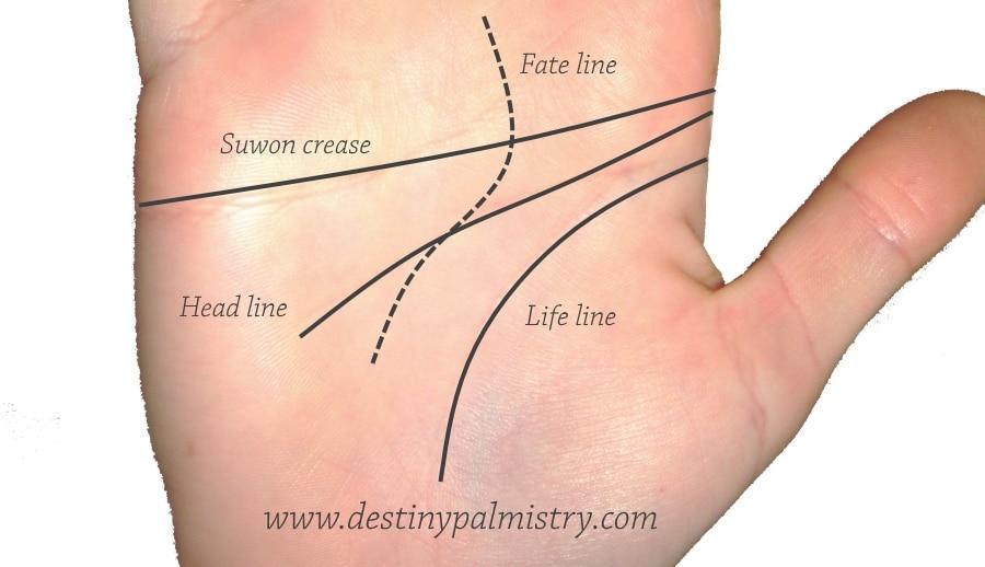 suwon crease, suwon line, strange palm lines