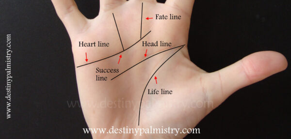palm lines, palmistry line, success line, fate line