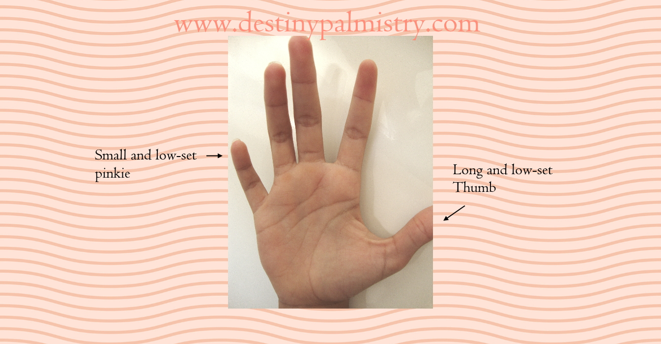 small pinkie meaning in palmistry, low-set pinkie image