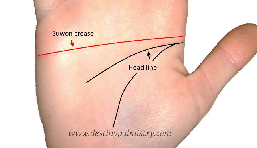 suwon crease on the palm
