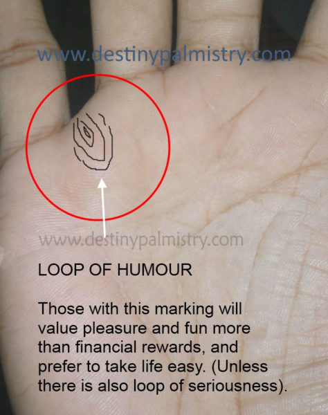 loop of humour, loop skin ridge patterns
