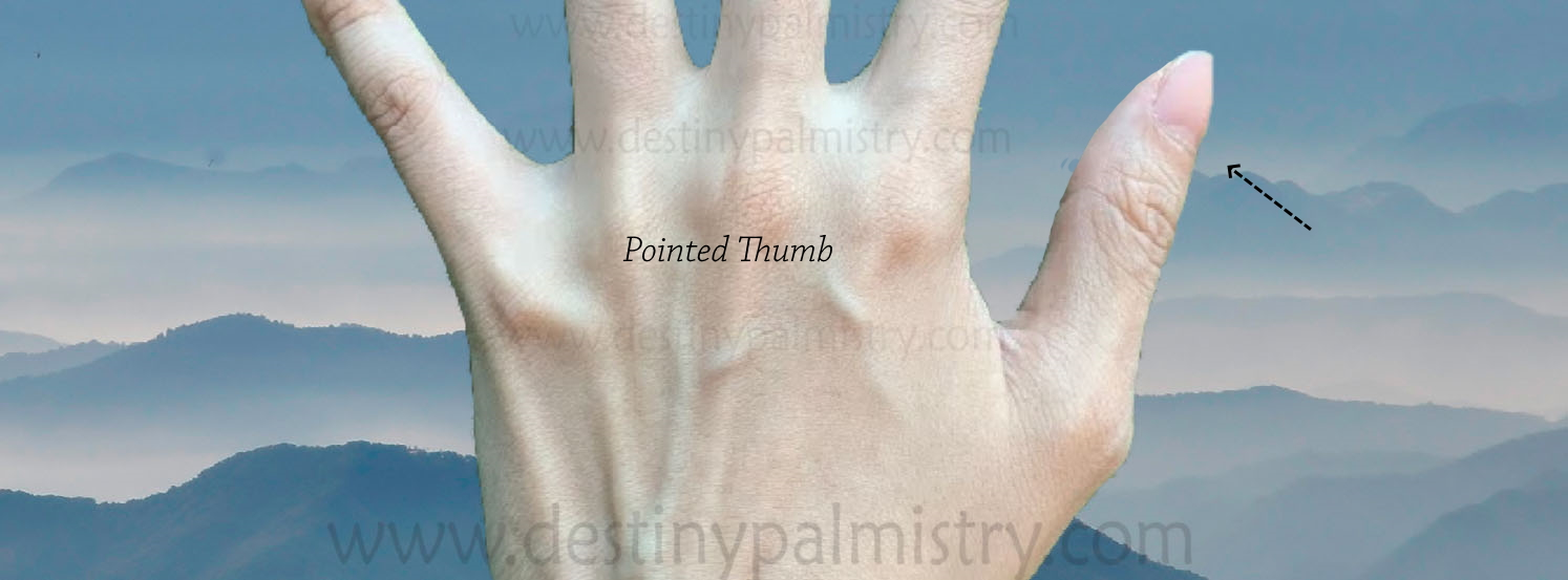 pointy thumb meaning in palmistry