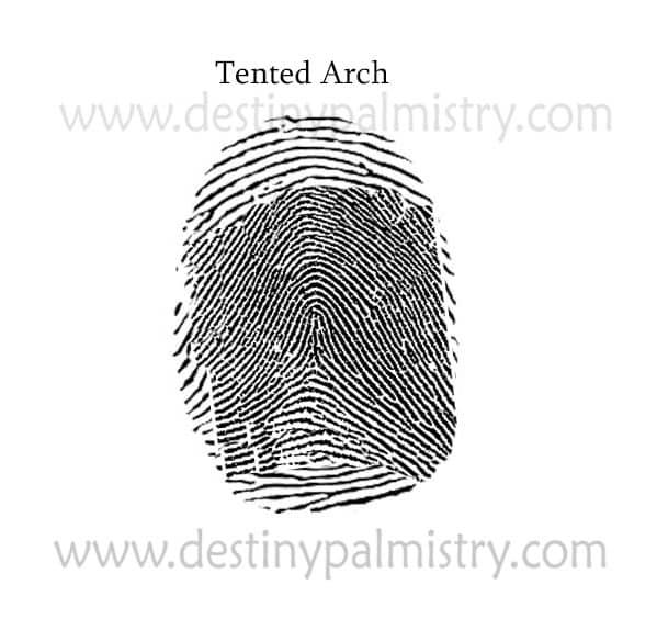 Tented arch fingerprint palmistry
