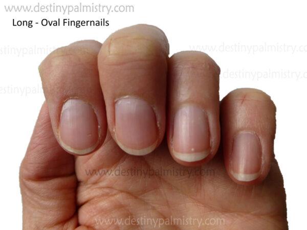 long oval fingernail