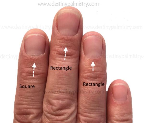 rectangle nail