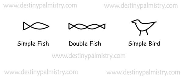 fish symbol image and a simple bird symbol