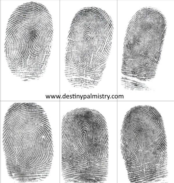 fingerprints by destiny palmistry